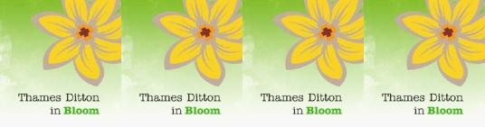 Thames Ditton Blooms on High